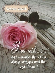Matthew 28:20 ~ now and throughout eternity ~