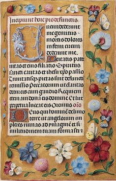 Libro d'ore Rothschild, Fiandre, Collezione privata, f. 23 / The… Medieval Manuscript, Medieval Art, Renaissance Art, Vintage Botanical Prints, Botanical Drawings, Antique Illustration, Botanical Illustration, Illuminated Letters, Illuminated Manuscript