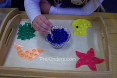Children use their thumb and forefinger to grasp each little bead and place it on a bowl on the shape. The beads are pony beads purchased from a craft store.