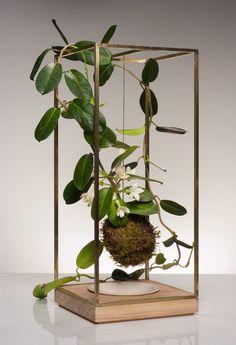 living plant sculptures