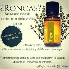 History of Aromatherapy & Essential Oils Melaleuca, Young Living Oils, Young Living Essential Oils, Doterra Essential Oils, Essential Oil Blends, Esential Oils, Doterra Recipes, Aromatherapy Oils, Diffuser Blends