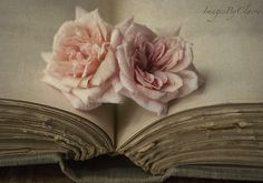 Shakespeare & roses… by Claire Brocato