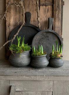 Bowls, Yard Art, Hygge, Ceramic Art, Rustic Decor, Flora, Planter Pots, Exterior, Garden