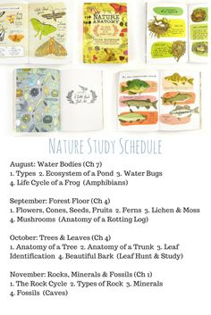 Nature Study Schedule using Julia Rothman's Nature Anatomy