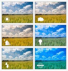 Compositie: het ordenen van beeldelementen volgens een ...
