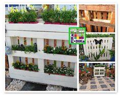 Fika a Dika - Por um Mundo Melhor: Decore seu Jardim 4