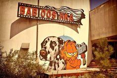 """O Projeto Matilha lançou um projeto complementar chamado """"Uivo"""" que procura exatamente contribuir através da arte para a inclusão social, alertando para questões relacionadas com os animais e cidadãos com necessidades especiais. Sabe mais em: www.projectomatilha.com"""
