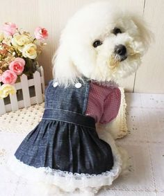 Vestido Jean Com Camisa Cachorro M - R$ 45,00 em Mercado Livre
