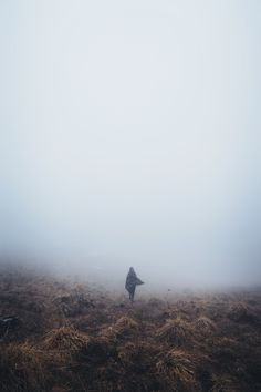 Elessio Lin - Woman walks through cold desert foliage on a foggy day in Verona. With the focus thrown into the bottom third, there is an asymmetric balance of color and white fog. Cold Deserts, Free High Resolution Photos, Dissociation, Foggy Morning, Outdoor Photos, Bald Eagle, Mists, Free Images, Clouds
