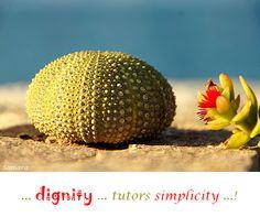 ... #dignity ... tutors #simplicity ...!