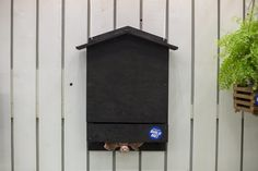 Bats are a kind of natural pesticide. Follow these steps to build your own DIY bat house, a more attractive version than you can get in stores!