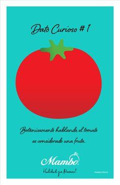 Botánicamente hablando, el tomate es un fruta. Dato curioso #1 MAMBO www.mambo.com.co