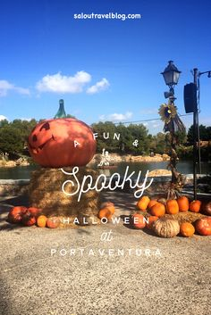 Looking for an exciting Halloween break this October or November? Look no further than PortAventura World in Salou. Spooky Halloween, Halloween Themes, Salou Spain, Time Of The Year, This Is Us, September, Weather, Jacket, Park