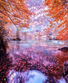 Naturpark, Blausee-Switzland