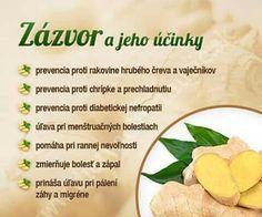 Infografiky Archives - Page 11 of 14 - Ako schudnúť pomocou diéty na chudnutie Dieta Detox, Health Eating, Wellness, Healthy Salads, Raw Food Recipes, Natural Health, Health Tips, Herbalism, Healthy Lifestyle