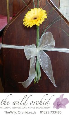 A pew end has been decorated with a single yellow gerbera, bear grass and ivory organza ribbon.