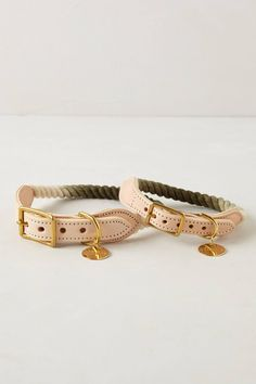 Ombre Dog Collar - anthropologie.com - Oh this would look great on my girl!