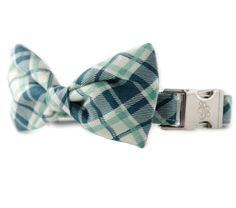 Green and Blue Plaid Bow Tie Dog Collar - Grasshopper Plaid Dog Collar from Sophisticated Pup