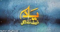 Yaad Teri Anay Lagi Episode 14 – 1 October 2016 PTV Home