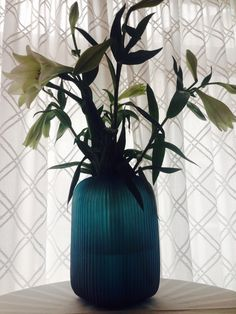 Picture by a Happy Customer: GUAXS Vase Yava L in clear petrol. #guaxs #vases #decoration #luxuryvases #handmade #yava #clearpetrol #bensstore #munich #onlineshop