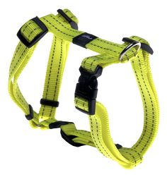 Rogz Utility Medium 5/8-Inch Reflective Snake Adjustable Dog H-Harness *** Check this awesome product by going to the link at the image. (This is an affiliate link and I receive a commission for the sales)