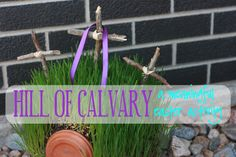 Full, step-by-step tutorial to grow your own Hill of Calvary /Easter Garden / Resurrection Garden at Mustard Seeds