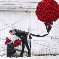 Valentines via @ncolebenisti