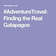 #AdventureTravel: Finding the Real Galapagos