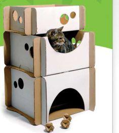 Corrugated Cat Habitats - Caboodle Eco-Friendly Cardboard Feline Furniture (GALLERY)