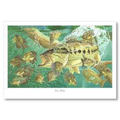LARGE MOUTH BASS ART