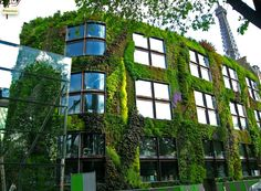 One of the best loved vertical gardens inhabits the walls of the Musee du Quai Branly in Paris. Created by Patrick Blanc, the inventor of vertical garden systems, this living wall is simply stunning. Green Architecture, Organic Architecture, Landscape Architecture, Amazing Architecture, Architecture Organique, Vertical Vegetable Gardens, Vertical Garden Design, Garden Living, Green Building