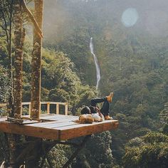 "86.3k Likes, 367 Comments - @tentree on Instagram: ""Nature is always the best company.  PC: @anggapermadi & @hens4m in Indonesia"""