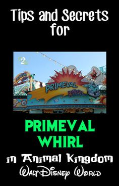 Everything you need to know about Primeval Whirl in Animal Kingdom.