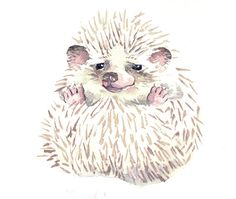 Woodland Hedgehog Love Painting Watercolor by Horseshoe Featured Vendor Whiskered Paintings Love Painting, Painting & Drawing, Hedgehog Illustration, Baby Hedgehog, My Sun And Stars, Sweet Pic, Illustrations, Cute Creatures, Rock Art
