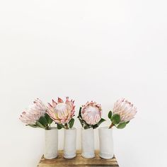 Today is one week from Mothers' Day! Have you bought a gift yet? Our stunning @winterwares ceramic vase + single posy combos are selling fast but we still have a few left // preorder one now for $80 including delivery at Littleposy.com.au/products/preorder-posy to ensure you don't miss out. It'll be delivered between 9am and 12pm on Sunday, May 8. The speckled white vase is so perfect for our blooms... Oh and this is a sneak peek! We have King Proteas tomorrow lovely people. ☺️☺️