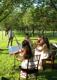 string quartet for our outdoor wedding :)