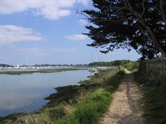 Chichester Harbour footpath