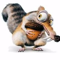 Scrat (also known as The Scrat and Squeak Attack) is an acorn-obsessed saber-toothed squirrel, one of the main characters in the Ice Age film series, and the main protagonist in the shorts, Gone Nutty, No Time For Nuts and Scrat's Continental Crack-up. Motos Bmw, Bmw Motorcycles, Bmw Logo, S1000r Bmw, E36 Cabrio, 1200 Gs Adventure, Carros Bmw, K100, Bmw Dealer