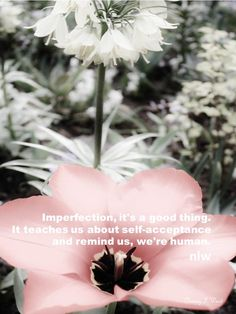imperfection #quote by nlw and photo by nlw