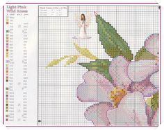 1L-1.jpg 1,075×858 pixels