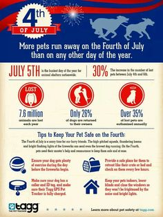 Dog safety on the 4th of July