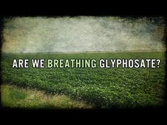 ▶ Gov't Study: 75% of AIR and Rain Samples Tested Positive for Monsanto's Roundup - YouTube