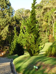 Jardim Amantikir - Campos do Jordão