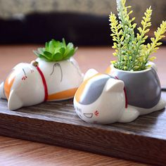 Natsume Yuujinchou Nyanko Sensei Cat Porcelain Ceramic Plant Vase Pot Home Decor