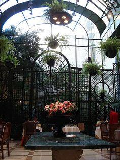 Agradable ambiente con jardín de invierno