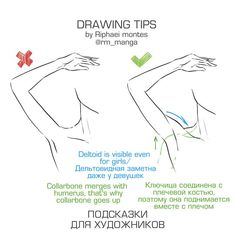 Anatomy Drawing Tutorial Find out about Drawing Check the webpage to find out more. - Figure drawing is challenging. The act of rendering the human form accurately on paper can be intimidating and frustrating if you try to tackle everything all Drawing Reference Poses, Anatomy Reference, Drawing Skills, Drawing Techniques, Drawing Tips, Sketching Tips, Drawing Ideas, Manga Drawing Tutorials, Body Drawing