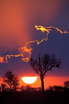 Sunset at Kruger National Park, South Africa. It's a beautiful effect when the sun outlines the clouds. This back lit sunset image is particularly lovely. All Nature, Amazing Nature, Amazing Sunsets, Beautiful Sunset, Beautiful World, Beautiful Places, Beautiful Scenery, Kruger National Park, National Parks