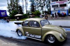 Bug smoke