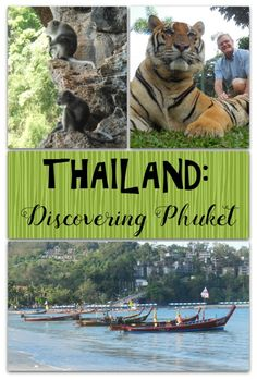Wondering what Phuket is all about? Wildlife, hospitality, gorgeous beaches, and so much more!