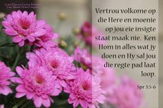 Dag 79 Bybelvers: Spreuke 3:5-6 Vertrou volkome op die Here en moenie op jou eie insigte staat maak nie.  Ken Hom in alles wat jy doen en Hy sal jou die regte pad laat loop.